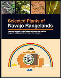 Cover of the Selected Plants of Navajo Rangelands Handbook